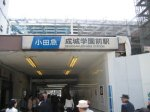 バカとハサミと成城学園からのバスは使いよう。