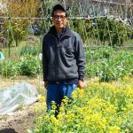 弦巻の農園は、野菜と花と昆虫のオアシスだった。